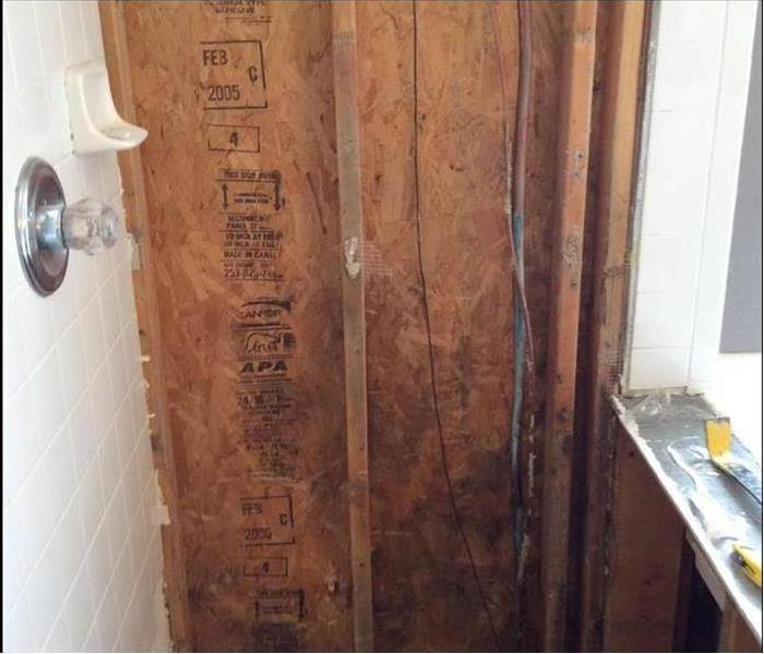 Mold Damage – Oakland Home Before