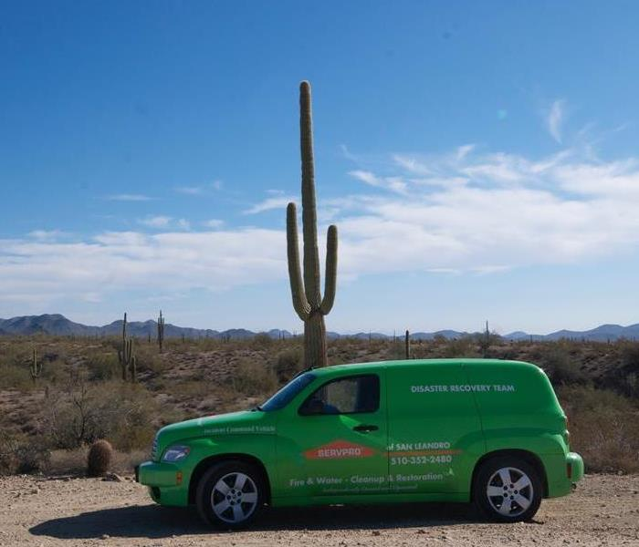 SERVPRO of San Leandro in Arizona?