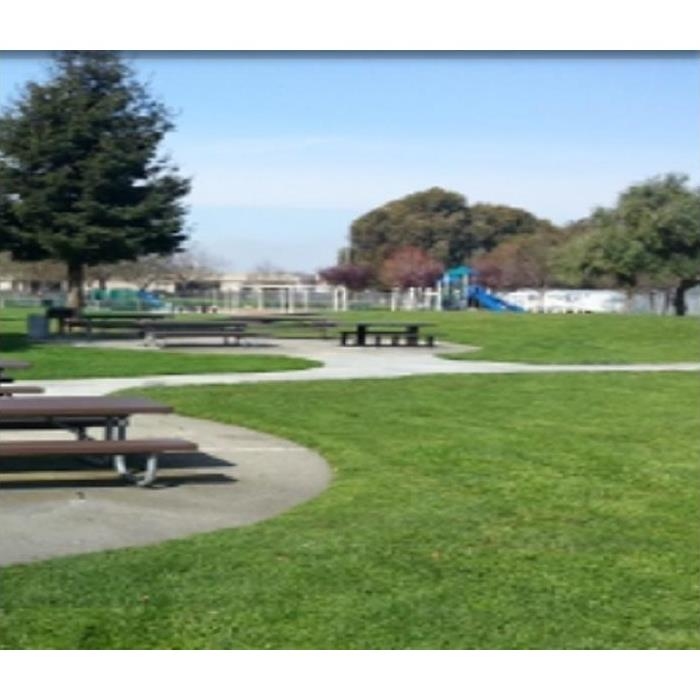 city park; houses and picnic tables in view