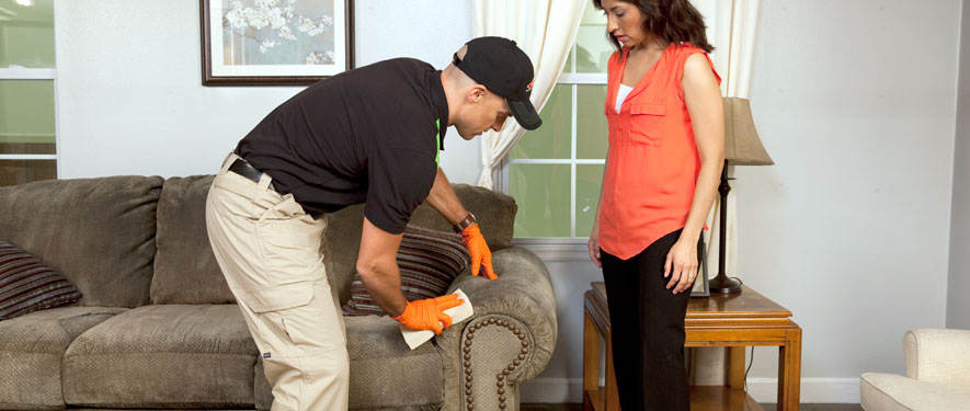 Oakland, CA carpet upholstery cleaning