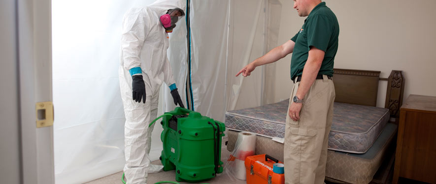 Oakland, CA mold removal process